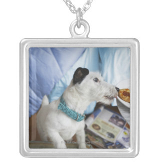 Jack russell terrier. silver plated necklace