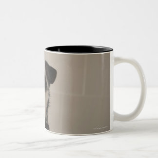Jack russell terrier. Two-Tone coffee mug
