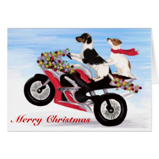 Jack Russell Terriers riding a motorcycle Card