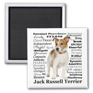 Jack Russell Traits Magnet