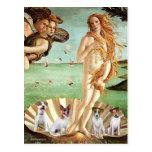 Jack Russells (four) - Birth of Venus Postcard
