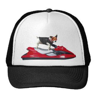 Jack Russsell Terrier cap