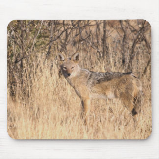 Jackal in the bush mouse pad