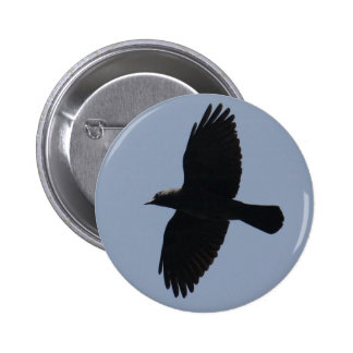 Jackdaw In Flight 6 Cm Round Badge