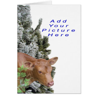 Jacki&PineTree-Customize-Add a picture Greeting Card