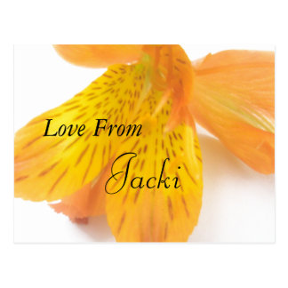 Jacki Postcard