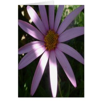 jackie purple greeting card