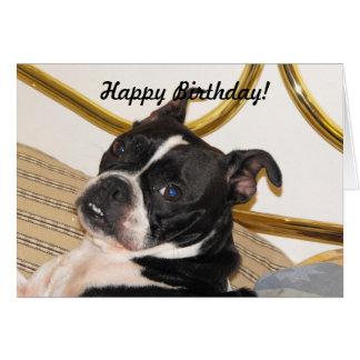 Jackies pic 2 003, Happy Birthday! Greeting Card