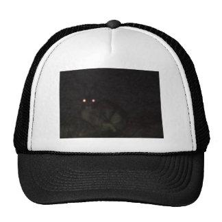 Jackrabbit At Night Hat