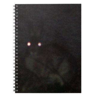 Jackrabbit At Night Notebooks
