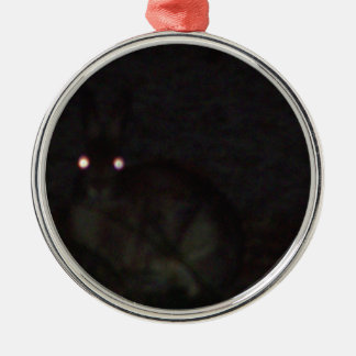 Jackrabbit At Night Silver-Colored Round Decoration
