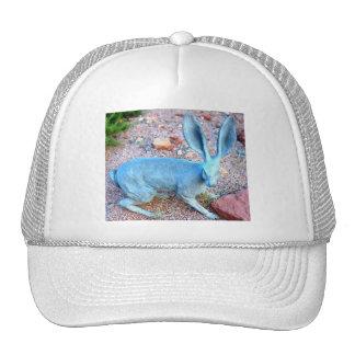 jackrabbit hat