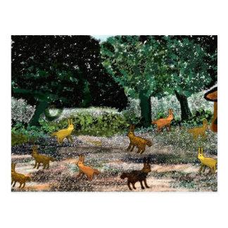 Jackrabbit Park Postcard