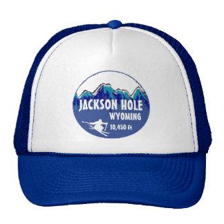 Jackson Hole Wyoming blue ski art hat