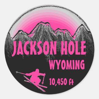 Jackson Hole Wyoming pink ski art stickers