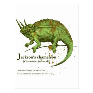 Jackson s chameleon - leaf はがき