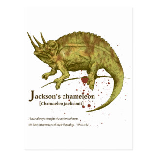 Jackson s chameleon - sepia はがき
