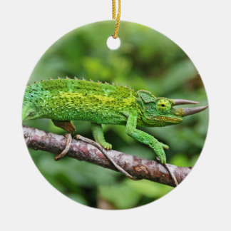 Jacksons Chameleon Christmas Ornament