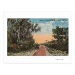 Jacksonville, Florida - View of John Anderson Postcard