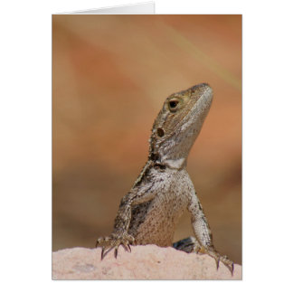 Jacky Dragon Greeting Card