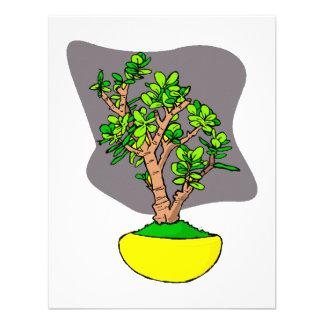 Jade Bonsai in Yellow Pot Custom Announcements