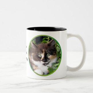 Jade Eyed Beauty Cat Mug