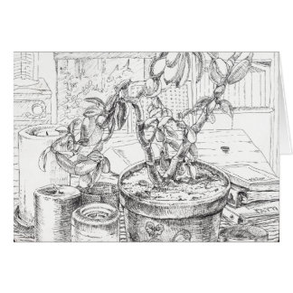 """""""Jade Plant Still Life"""", a pen & ink still life Card"""