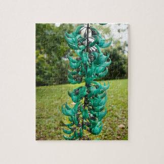Jade Vine, Botanical Garden, Maui, Hawaii, USA Puzzle