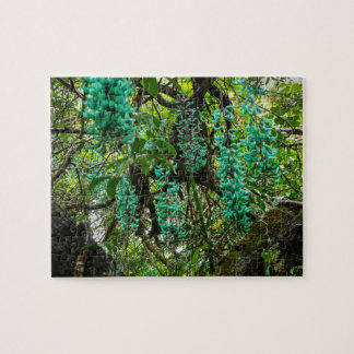 Jade Vine, Botanical Garden, Maui, Hawaii, USA Puzzles