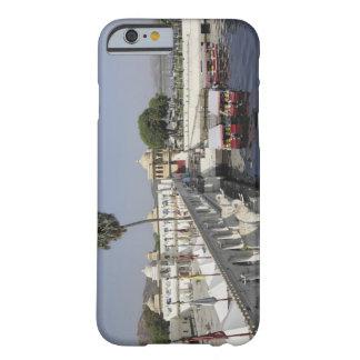 Jag Mindar Palace, Lake Pichola, Udaipur, India. Barely There iPhone 6 Case
