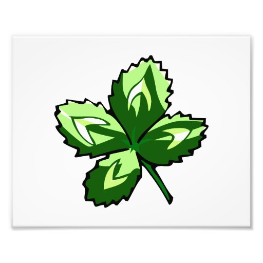 jaggy four leaf clover st pats.png photo