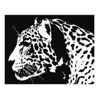 Jaguar 21.5 Cm X 28 Cm Flyer