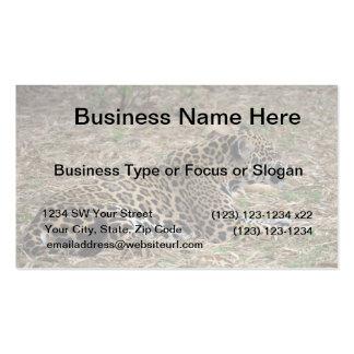 jaguar cat snarling side view feline business cards