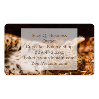 Jaguar Cub Lying in Foliage Double-Sided Standard Business Cards (Pack Of 100)