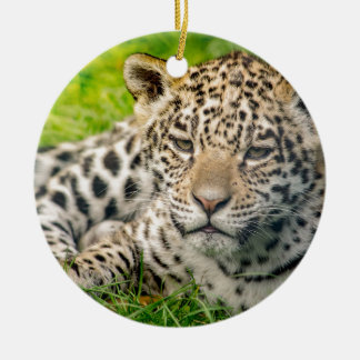 Jaguar cub round ceramic decoration