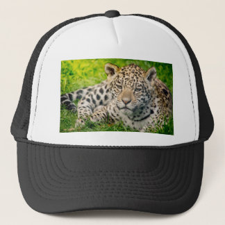 Jaguar cub trucker hat