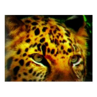 Jaguar Eyes Postcard