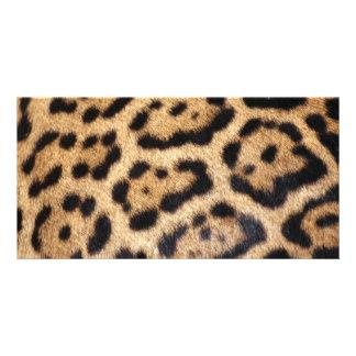 Jaguar Fur Photo Print Customised Photo Card