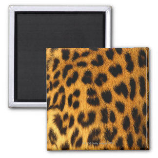 Jaguar Fur Square Magnet