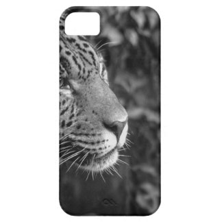 Jaguar in black and white iPhone 5 cover