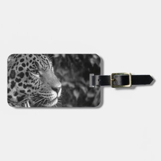 Jaguar in black and white luggage tag