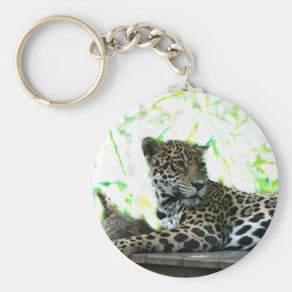 Jaguar looking over shoulder dappled green key ring