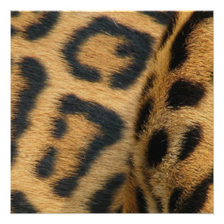 Jaguar Pattern Invitation