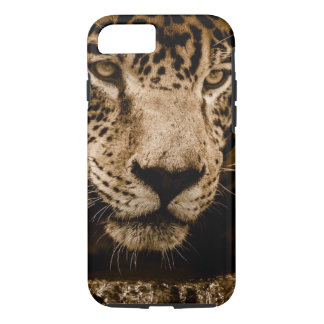 Jaguar Wild Animal Big Cat Face Eyes Photograph iPhone 8/7 Case