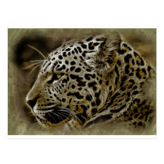 Jaguar Wild Cat Spots African Safari Destiny Postcard