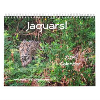 Jaguars! 2014 Wall Calendar