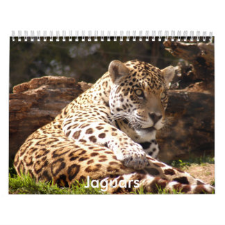 Jaguars Calendar, Jaguars Calendar