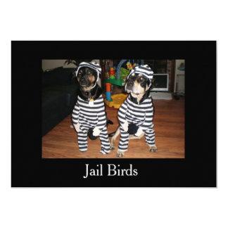 Jail Bird Dogs with kitten on back 13 Cm X 18 Cm Invitation Card
