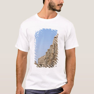 Jain temple in Chittorgarh Fort, India T-Shirt