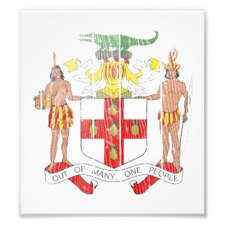 Jamaica Coat Of Arms Photo Art